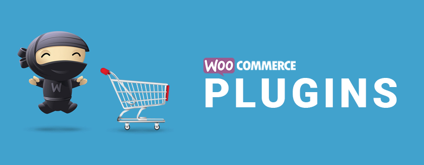 The 5 Woocommerce plugins that cannot be missing in your WordPress